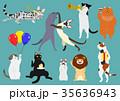 猫のパーティー カラー 35636943