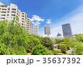 マンション 集合住宅 風景の写真 35637392