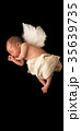 天使 35639735