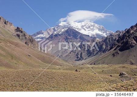 南米チリとアルゼンチン国境、高山植物の草原が広がるアンデス山脈の渓谷から南米最高峰アコンカグアを見る 35646497