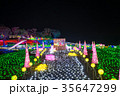 東京ドイツ村 イルミネーション ウインターイルミネーションの写真 35647299