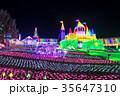 東京ドイツ村 イルミネーション ウインターイルミネーションの写真 35647310