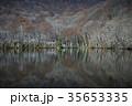 初冬 蔦沼 沼の写真 35653335