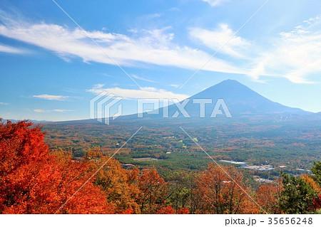 富士山と秋の紅葉風景 35656248