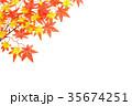 もみじのフレーム 35674251