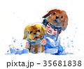 わんこ 犬 帽子のイラスト 35681838