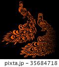 孔雀のイラスト 35684718