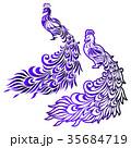 孔雀のイラスト 35684719