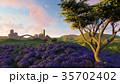 ラベンダー色 藤色 野原のイラスト 35702402