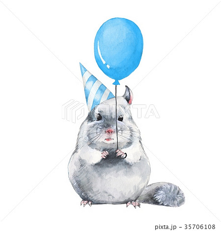 Chinchilla with balloon. Birthday card 35706108