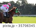 競馬 競走馬 日本中央競馬会の写真 35706345