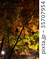 紅葉 ライトアップ くらもち滝の里の写真 35707954