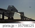 東京ゲートブリッジ 飛行機 ゲートブリッジの写真 35708125