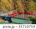 紅葉 秋 峰谷橋の写真 35710759