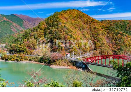 《東京都》紅葉の奥多摩湖・峰谷橋 35710772