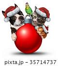 クリスマス xマス 動物のイラスト 35714737
