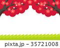 梅 梅の花 植物のイラスト 35721008