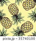 トロピカル 熱帯 パイナップルのイラスト 35740100