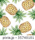 トロピカル 熱帯 パイナップルのイラスト 35740101