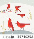 アイコン イコン 鳥のイラスト 35740258