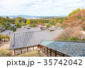 奈良公園 11月 紅葉の写真 35742042
