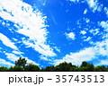 新緑と青空の風景(新座市総合運動公園にて) 35743513