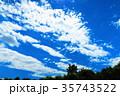 新緑と青空の風景(新座市総合運動公園にて) 35743522
