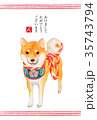 年賀状 戌年 柴犬のイラスト 35743794