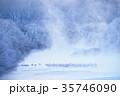 川霧 丹頂鶴 冬の写真 35746090