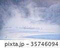 川霧 丹頂鶴 冬の写真 35746094