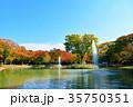 代々木公園 紅葉 秋の写真 35750351