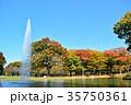 代々木公園 紅葉 秋の写真 35750361