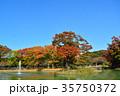 代々木公園 紅葉 秋の写真 35750372