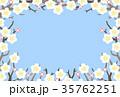 梅 白梅 梅の花のイラスト 35762251