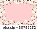 梅 白梅 梅の花のイラスト 35762252
