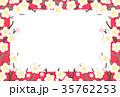 梅 白梅 梅の花のイラスト 35762253