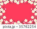 梅 白梅 梅の花のイラスト 35762254