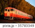 列車 参宮線 2両の写真 35783349
