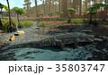 ワニ 35803747
