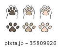犬 肉球 イラスト 35809926