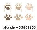 犬 肉球 イラスト 35809933