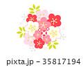 梅 白梅 梅の花のイラスト 35817194