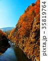 秋 風景 紅葉の写真 35819764