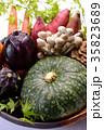 野菜 野菜集合 食材の写真 35823689
