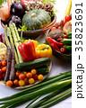 野菜 野菜集合 食材の写真 35823691