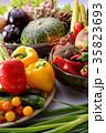 野菜 野菜集合 食材の写真 35823693
