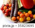 野菜 野菜集合 食材の写真 35823695