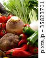 野菜 野菜集合 食材の写真 35823701