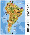 南米大陸 フローラ 植物相のイラスト 35829292
