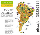 南米大陸 フローラ 植物相のイラスト 35829314